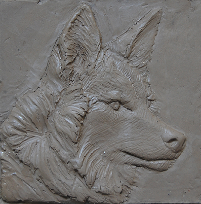 coyote plaque