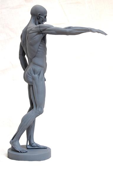 Houdon L'Ecorche Sculpture